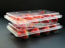 草莓专用万博意甲ManBetX网页保鲜盒